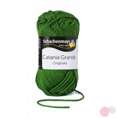 Catania-Grande-oliva