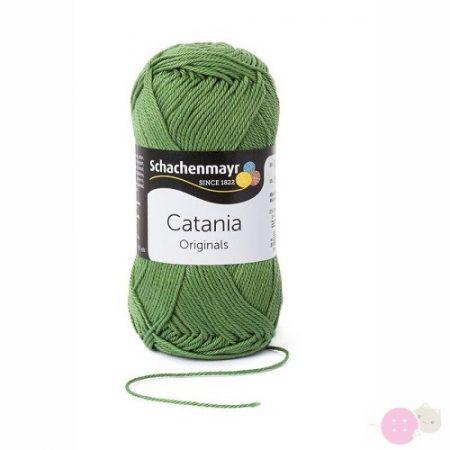Catania-fonal-kiwi